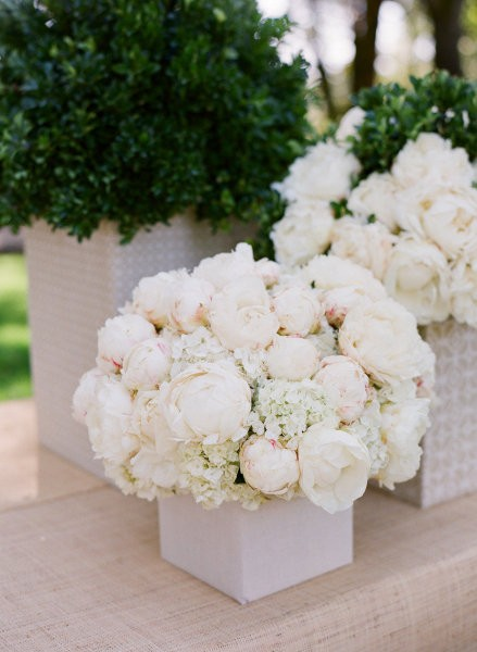 Flowers Little Bennet