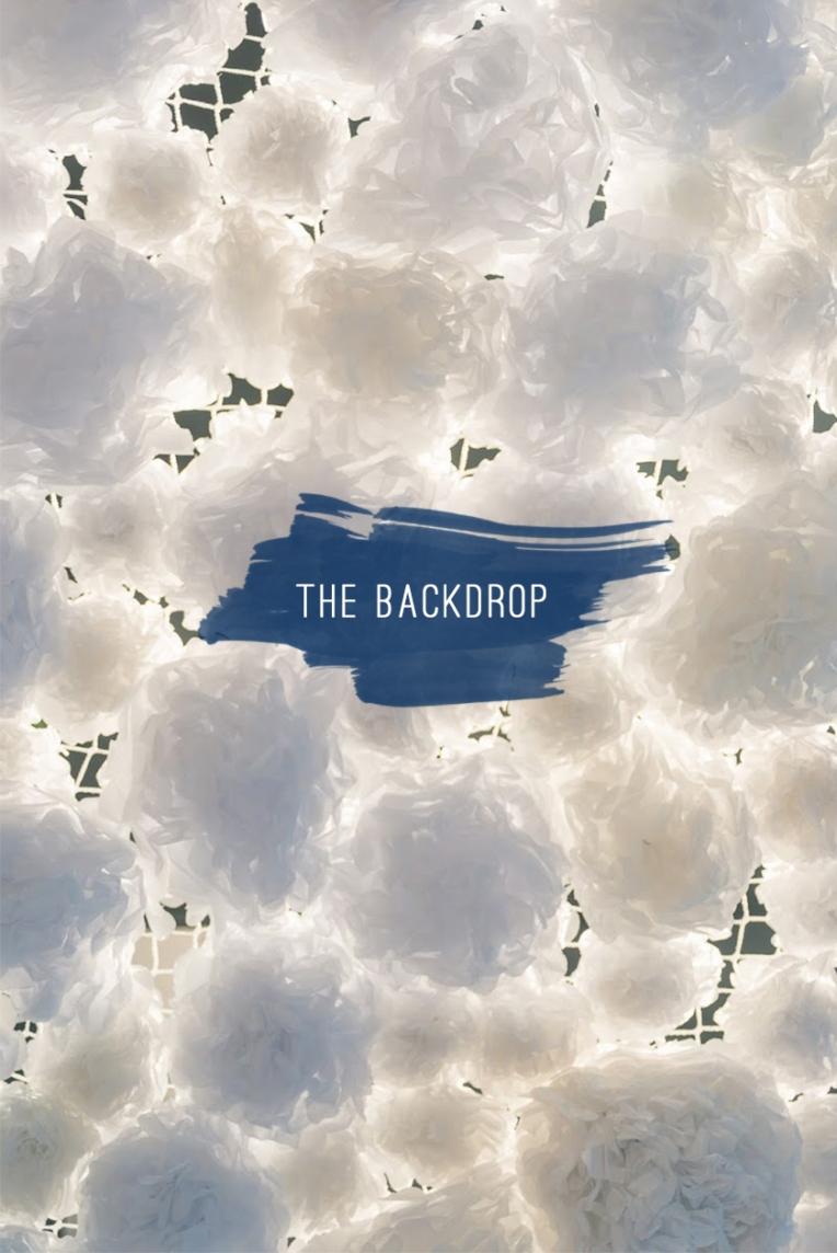 Backdrop-3